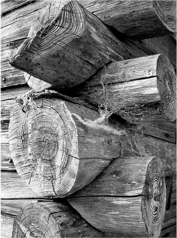 Logging.php